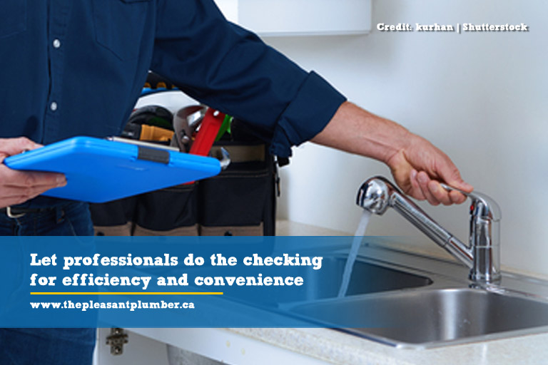 Let professionals do the checking for efficiency and convenience