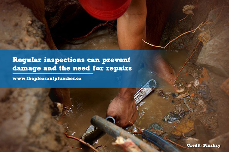 Regular inspections can prevent damage and the need for repairs